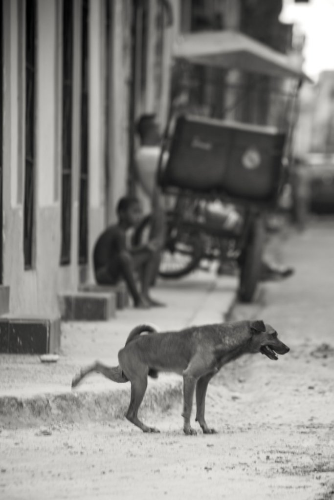 Cuba-201432.JPG